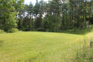 400 acres, schuyler,pine hill,potter rd,rt 275, willow, garage 049