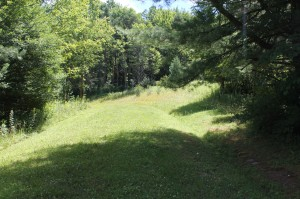 400 acres, schuyler,pine hill,potter rd,rt 275, willow, garage 051