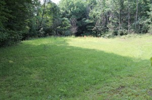 Lyman Rd.,X-mas Tree Farm,LePrell Farm,Windfall-BearPaw&Huntsman 002
