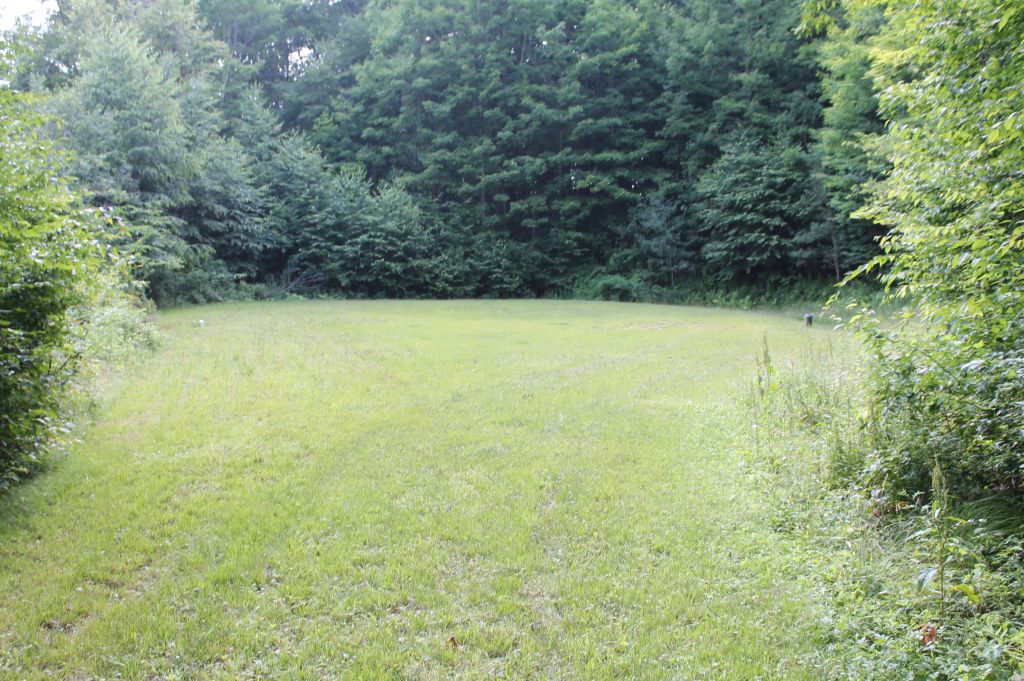 SALE PENDING: File #673 Parcel #12: Town of Wirt/Allegany County