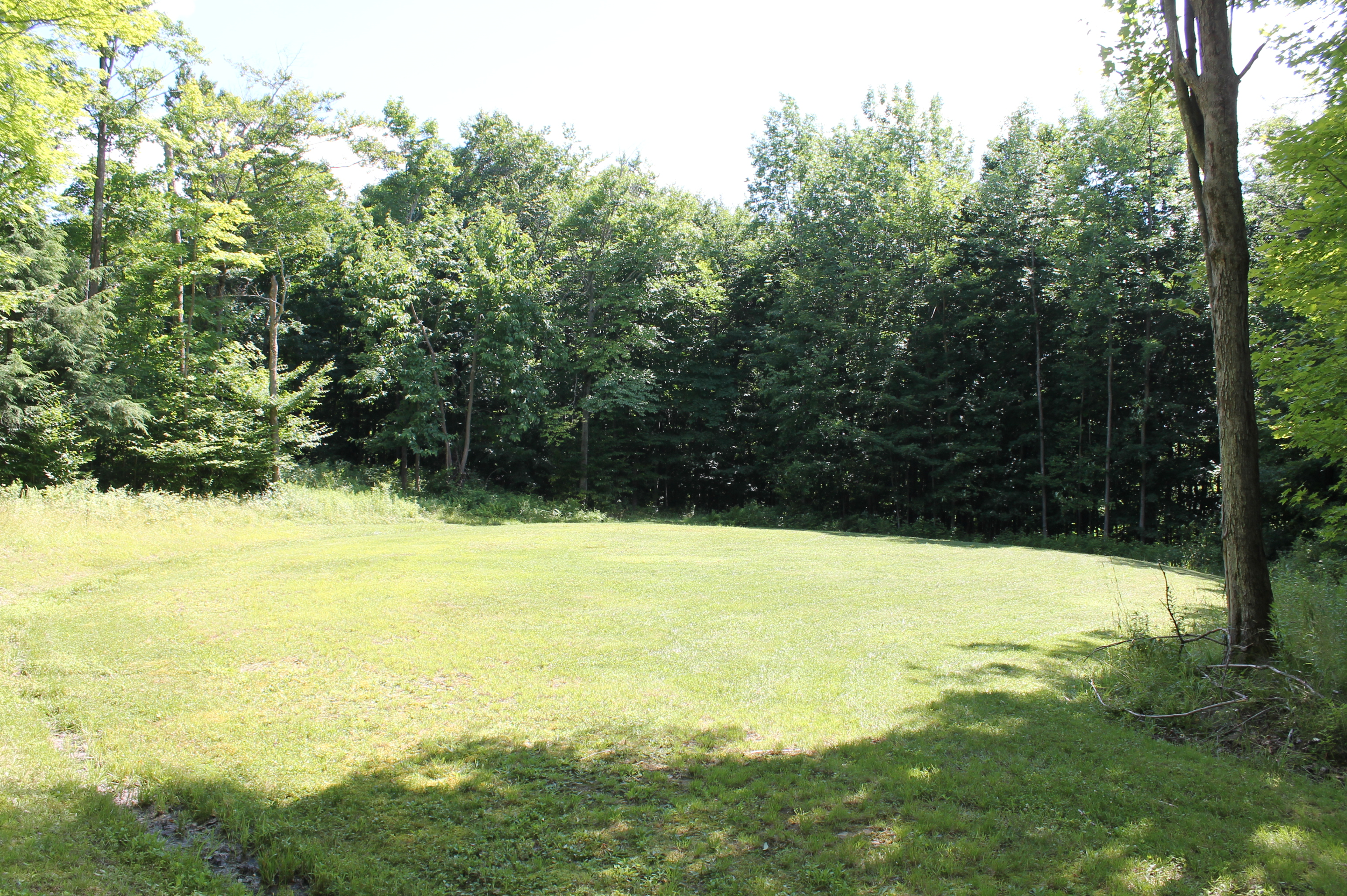 SOLD File #833 Parcel #9: Town of Allen/Allegany County