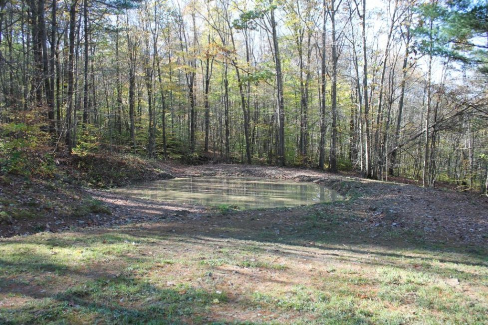 SOLD File #446 Parcel #6 T/Friendship Allegany County
